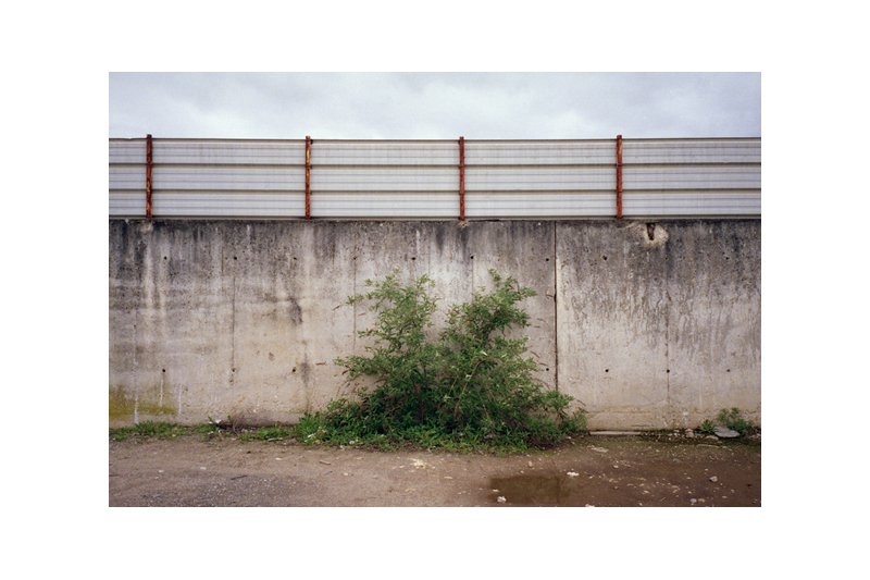 beton-vs-vegetation-10